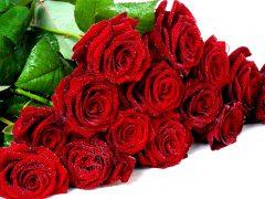 букет-троянд