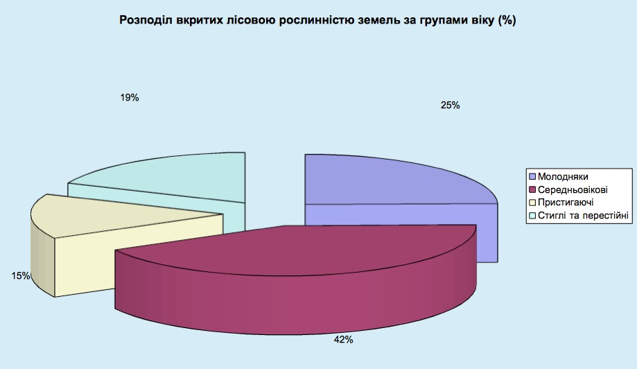 diagrama_4