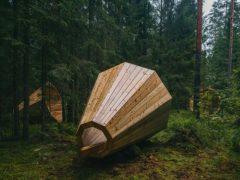 forestmegaphones