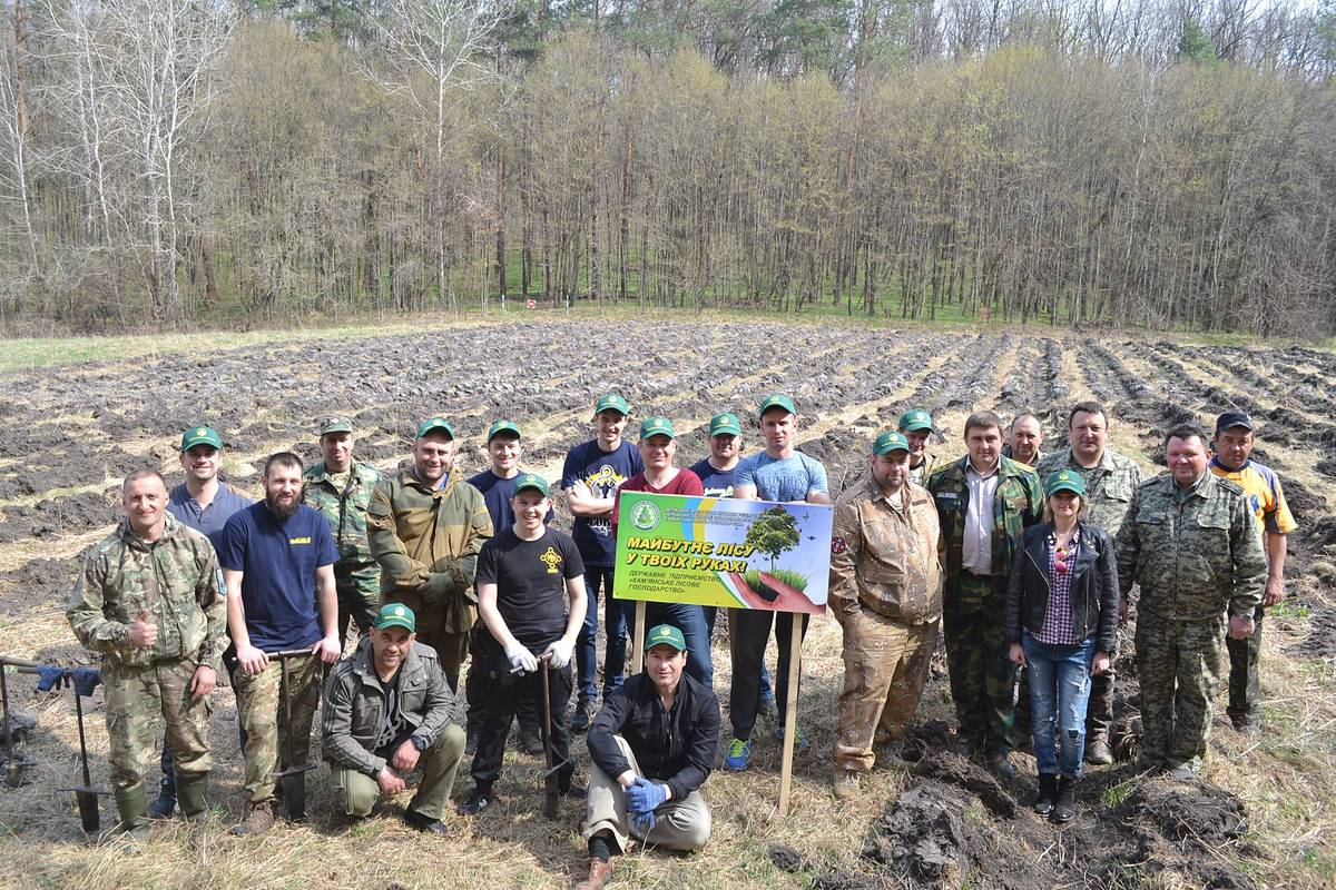 У Холодному Яру активісти висадили новий ліс