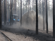 Черкащина. П'ять годин гасили лісову пожежу