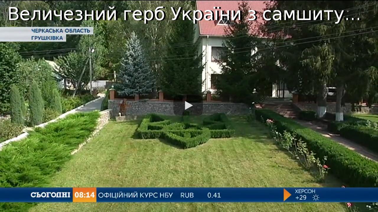 Величезний-герб-України-з-самшиту-виростили-лісівники-на-Черкащині