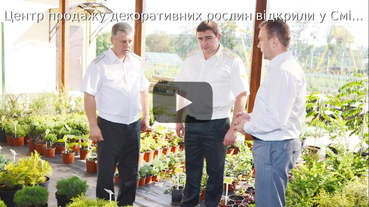 Центр продажу декоративних рослин відкрили у Смілянському лісгоспі